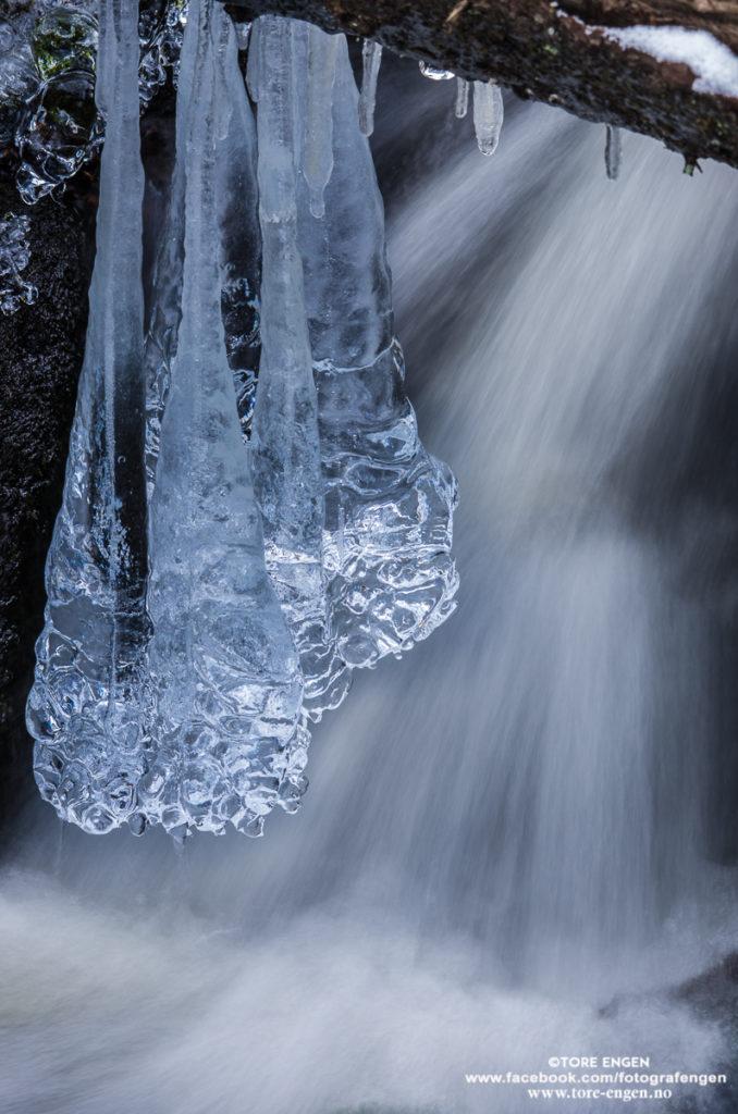 Bilde av en klump med istapper som henger over  rennende vann i en bekk.