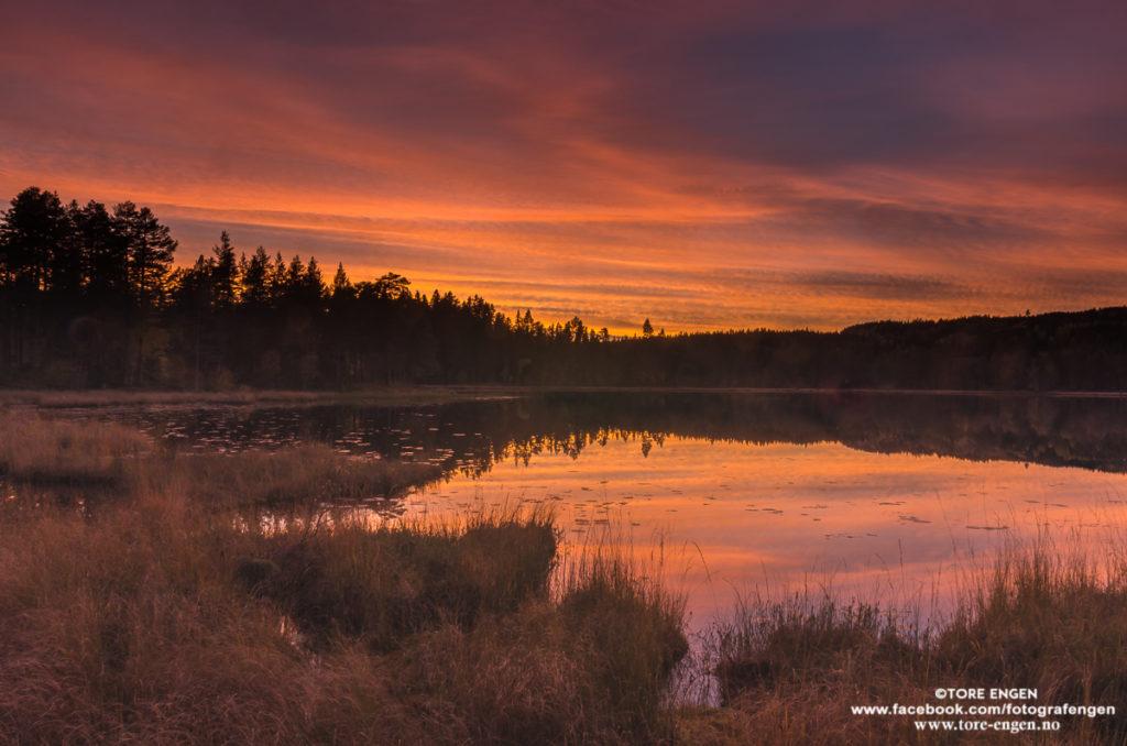 Landskapsbilde av Kastadtjernet nord for Gjøvik. Røde skyer og rød refleksjon i vannet.